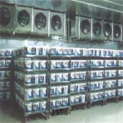 تونل انجماد با مبرد آمونیاک<