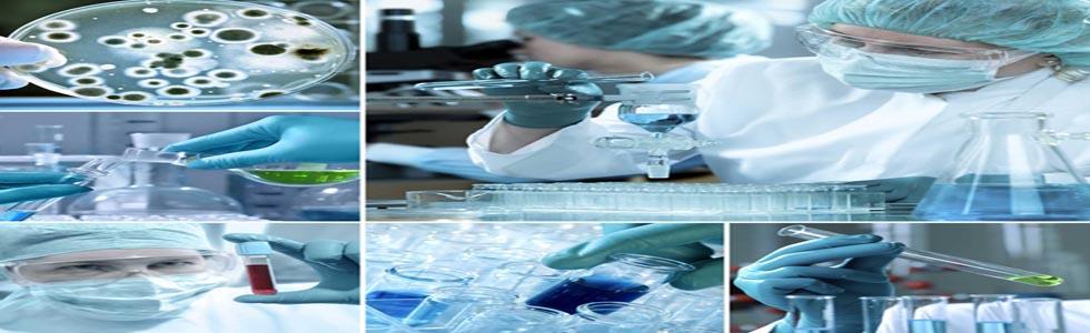 شرکت پیشرو طب پرشیا