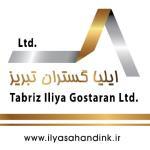 لوگو شرکت ایلیا گستران تبریز