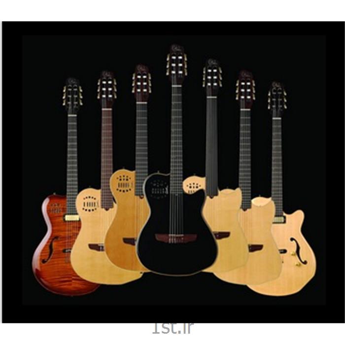 عکس گیتارGodin Guitars-گیتار گودین