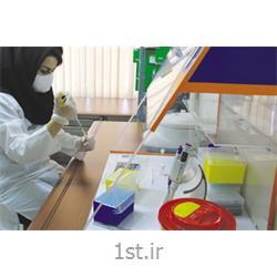 آزمایشات پنل ترومبوفیلیک Thrombophilic Tests