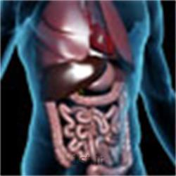 ( U.B.T.  ( Urea Breath Test   تست اوره تنفسی