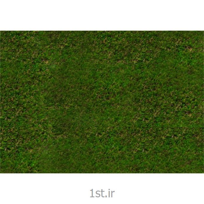 چمن مصنوعی رویال گراس (Royal Grass)