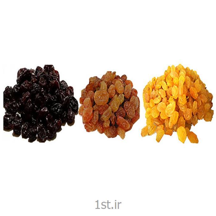 صادرات محصولات کشاورزی و خشکبار<