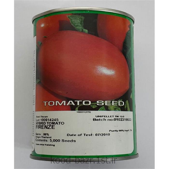 بذر گوجه فرنگی پلیت شده فیرینزه ( firenze )<