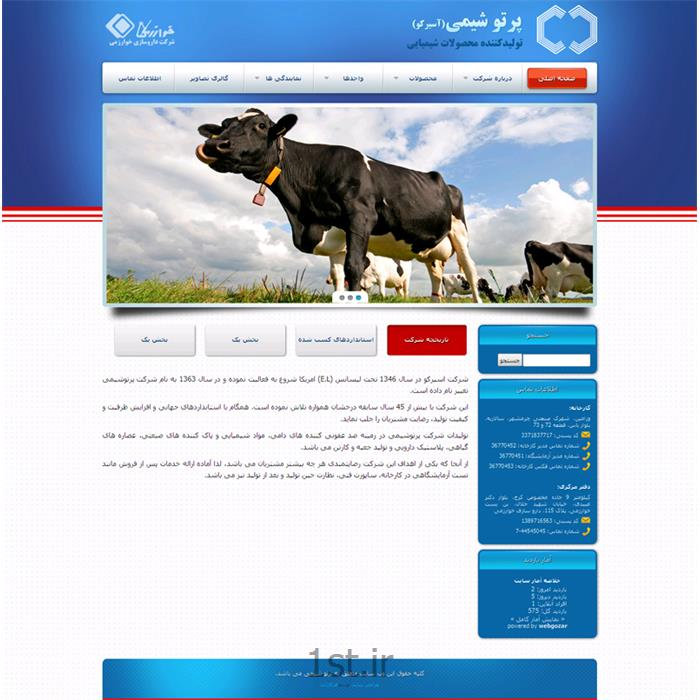 عکس طراحی سایتطراحی سایت حرفه ای