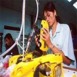 بیمه کارفرمایان در مقابل کارکنان آسیا