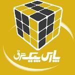 لوگو شرکت توسعه فناوری نوین پارس پیک شرق