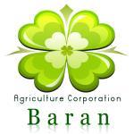 شرکت تعاونی کشت و صنعت باران