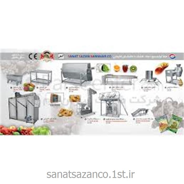 عکس ماشین آلات فرآوری میوه و سبزیجاتخط تولید میوه جات و سبزیجات خشک با خشک کن کابینتی