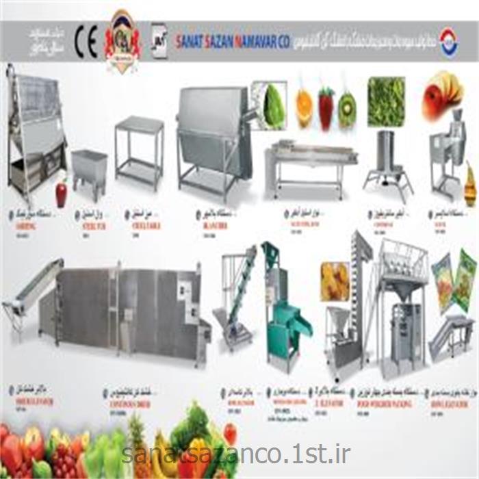 عکس ماشین آلات فرآوری میوه و سبزیجاتخط تولید میوه جات و سبزیجات خشک با خشک کن کانتینیوس