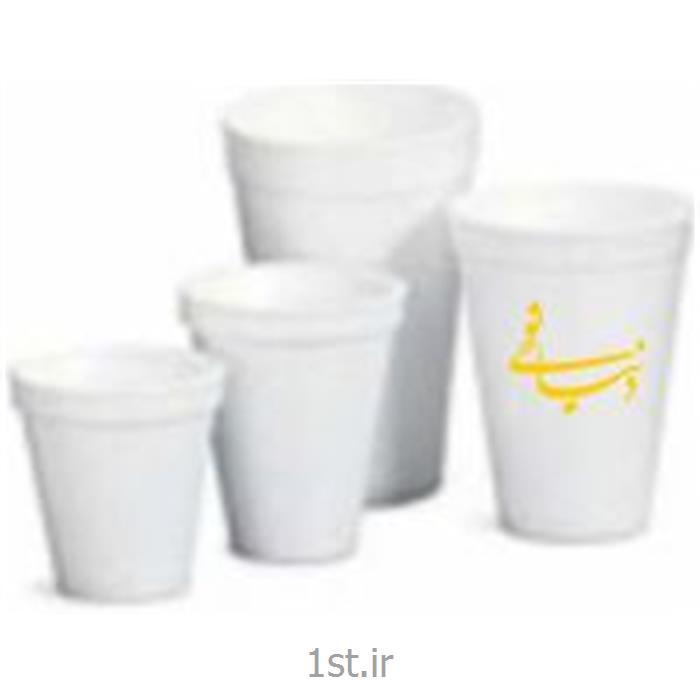 ظروف رستورانی یکبار مصرف