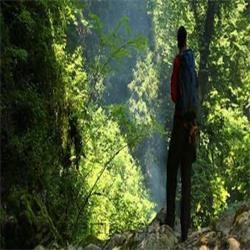 تور یکروزه جنگل انجیلی اردیبهشت 92