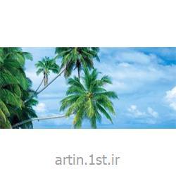تور مالدیو تابستان 93