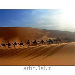 عکس سایر خدمات کسب و کارتور تونس 7شب و 8روز