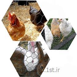 توری مرغی ( توری عایق )