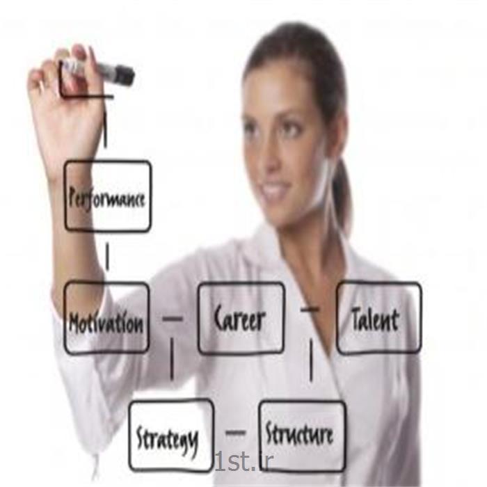 مشاوره استاندارد سرمایه گذاری در منابع انسانی