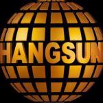 لوگو شرکت دارالترجمه رسمی هنگ سان (266)