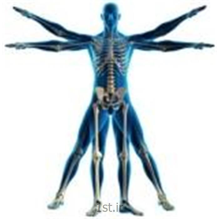 درمان ضایعات ورزشی با روش shock wave therapy
