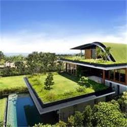 طراحی و اجرای بام سبز (روف گاردن) Roof Garden