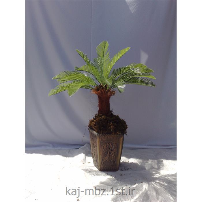 عکس گل و گیاه مصنوعیدرختچه سیکاس پاکوتاه (sycas)