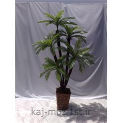 درختچه مصنوعی سیکاس (sycas)