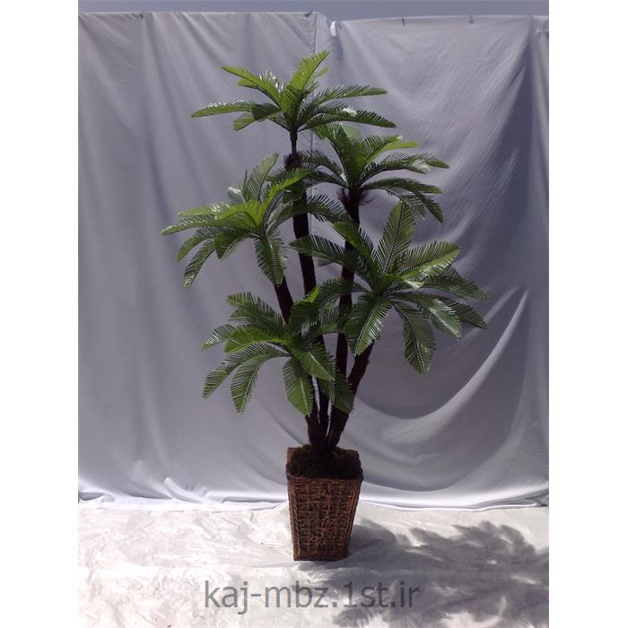 عکس گل و گیاه مصنوعیدرختچه مصنوعی سیکاس (sycas)