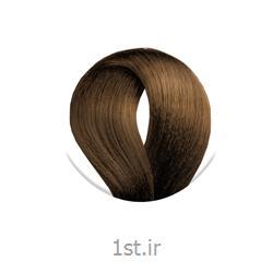 عکس رنگ مورنگ موی بلوند طلایی روشن داهلیا 8/3 DAHLIA Paris Color