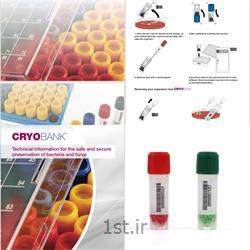کرایو بانک جهت نگهداری باکتری و سلول