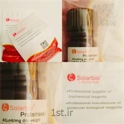 پروتیناز  silarbio1gr k