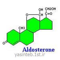Aldosterone آلدسترون DIAMETRA دیامترا