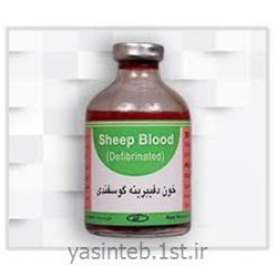 خون گوسفندی جهاد