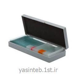 جعبه جای لام 10 عددی با درب لولایی قفل دار PIP -ABS