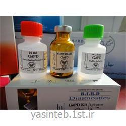 سوش میکروبی (لیوفیلیزه) Staph. epidermidis ATCC:12228 بهارافشان