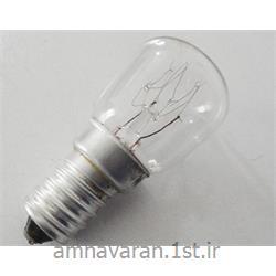 لامپ فلاشر 220 ولت