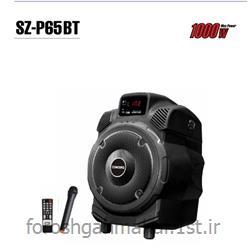 عکس باند و بلندگو (اسپیکر)اسپیکر دو کانال اکتیو پرتال مدل SZ-P65 BT