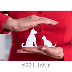 بیمه سامان طرح حیوانات خانگی