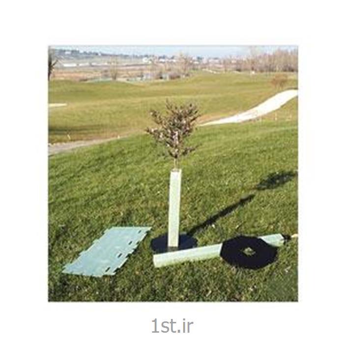 محافظ نهال درخت