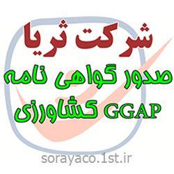 عکس گواهینامه سیستم های مدیریتیصدور گواهینامه ایزو GGAP کشاورزی