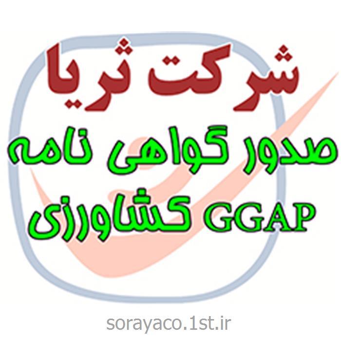 صدور گواهینامه ایزو GGAP کشاورزی