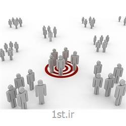 سیستم یکپارچه حرفه ای ها-حسابداری