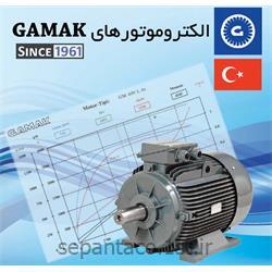 عکس الکترو موتور جریان متناوب (AC)الکتروموتور 15 کیلو وات 1000 دور گاماک