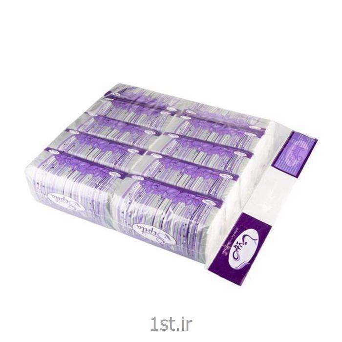دستمال کاغذی سافت پک 100 برگ 2 لایه 10 عددی صپیتا