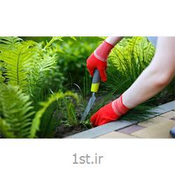 خدمات باغبانی تعویض گلدان
