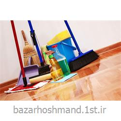 نظافت داخل منزل توسط نیروهای مجرب خانم و آقا