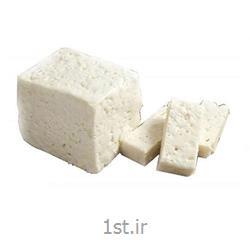 پنیر سفید 400 گرم پالود