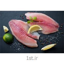 فیله استیک ماهی شیر 700 گرمی خلیج فارس نوین