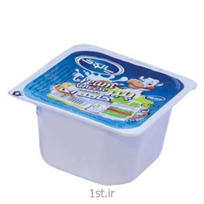 پنیر خامه ای 250 گرم پالود