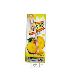 عکس سایر غذاها و نوشیدنی هامریخی نکتار اناناس تتراپک