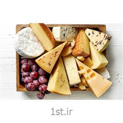 پنیر یواف 400 گرمی پاکبان